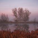 Canberra  sunrise by Kym Bradley