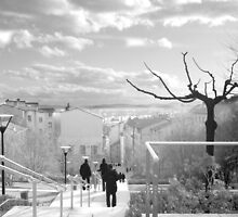 Red Cross hill staircase and view to Lyon by KERES Jasminka