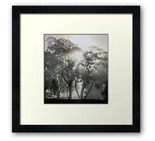~ Tsahaylu ~ Framed Print