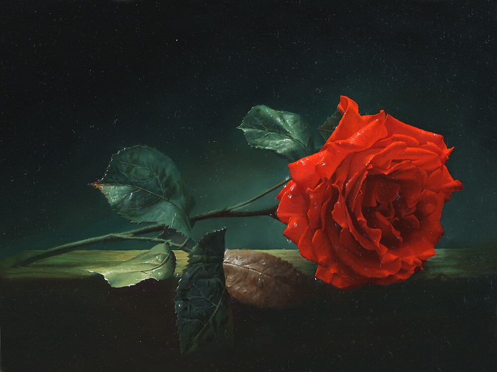 Lonely rose by Antonov