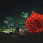 Lonely rose by Antonov