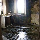 The Jumanji Room by Matt Roberts