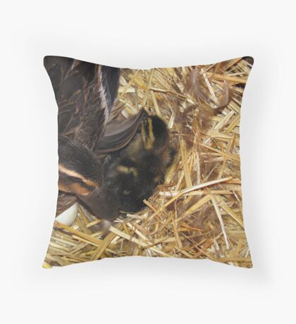 Welcome to the world! Throw Pillow