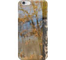 Reflets d'étang iPhone Case/Skin
