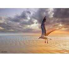Soft Sunrise on the Beach 5 Photographic Print