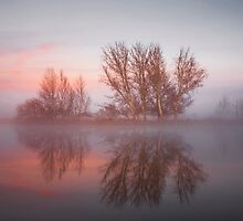 Sunrise over the  Molonglo  River Canberra  by Kym Bradley