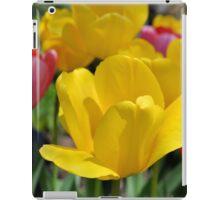 Pink and Yellow Garden Tulips iPad Case/Skin