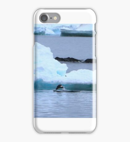Adelie Penguins in Antarctica, 9 iPhone Case/Skin