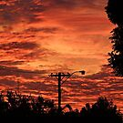 My Sky by Rick Playle