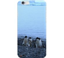 Adelie Penguins in Antarctica, 13 iPhone Case/Skin