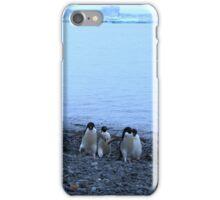 Adelie Penguins in Antarctica, 13 iPhone Case/Skin