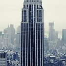 Empire State Building - New York by Mark Wilson