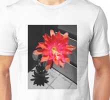 Cactus Flower At High Noon Unisex T-Shirt