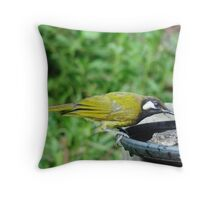 White-Eared Honeyeater Throw Pillow