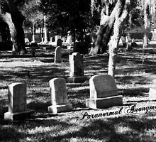 Cycadia Cemetery by Paranormal Anonymous