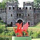 Cardiff Castle by Margaret Stevens