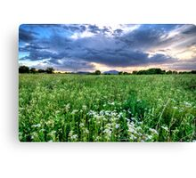 Tall Green and Clouds Canvas Print