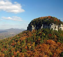 Pilot Mountain by intography