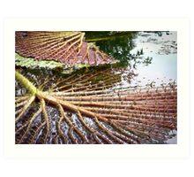 Upside Down Water Lily Art Print