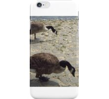 Geese Twins iPhone Case/Skin