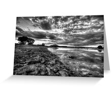 Up the Shoreline-B+W Greeting Card