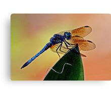 Dragonfly on a Leaf  *After* Canvas Print