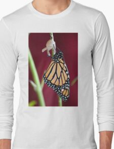 Monarch Butterfly drying Wings Long Sleeve T-Shirt