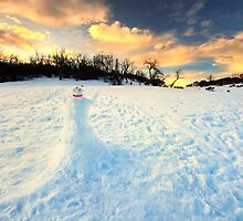 Do You Want to Build a Snowman? by Felix Haryanto