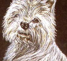 Scottie Dog Card by sharpie