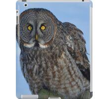 Great Gray Owl Portrait II iPad Case/Skin