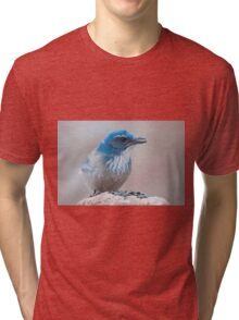 Scrub-Jay with a seed Tri-blend T-Shirt