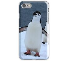 Chinstrap penguins in Antarctica, 1 iPhone Case/Skin