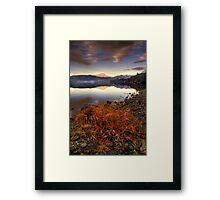 Ard Grasses Framed Print