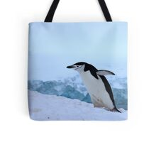 Chinstrap penguin in Antarctica, 4 Tote Bag