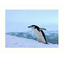 Chinstrap penguin in Antarctica, 4 Art Print