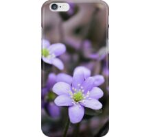 FIRST FLOWER OF SPRING iPhone Case/Skin