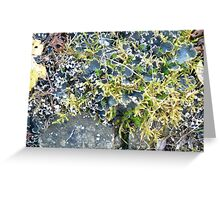 moss and lichens Greeting Card