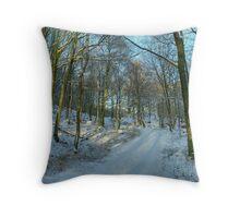 Winter at High Dam, Finsthwaite Throw Pillow