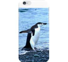 Chinstrap penguins in Antarctica,    9 iPhone Case/Skin