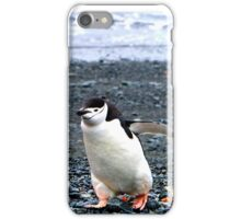 Chinstrap penguins in Antarctica,    10 iPhone Case/Skin