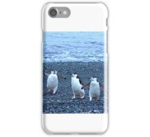 Chinstrap penguins in Antarctica,    11 iPhone Case/Skin