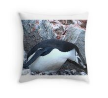 Chinstrap penguin in Antarctica,    12 Throw Pillow