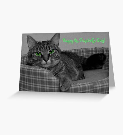 Happy St. Patrick's Day From Gracie Greeting Card