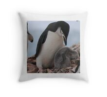 Chinstrap penguins in Antarctica,    15 Throw Pillow