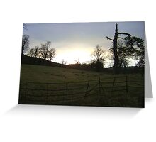 sunset, Falkland (trees, field with molehills, fence) Greeting Card