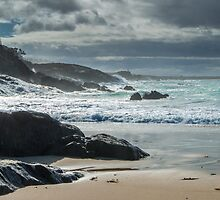Spiky Beach In Winter by Craig Russell-Green