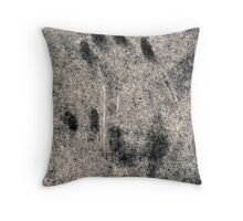 17.2.2010: Handmade Throw Pillow