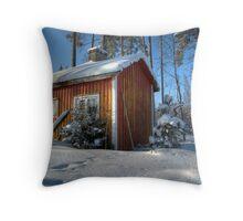 18.2.2010: Sauna & Winter Throw Pillow