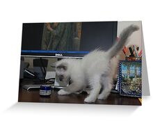 Murphy plays Desk Hockey Greeting Card