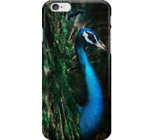 Splendour iPhone Case/Skin